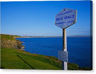 Anachronistic Sign, Guillamene Swimming Canvas Print by Panoramic Images