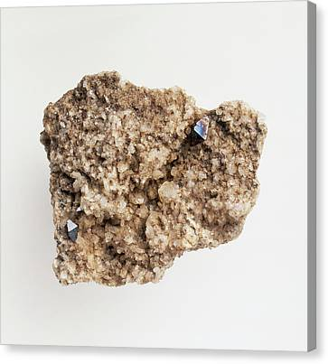 Titanium White Canvas Print - Anatase Mineral (titanium Oxide) by Dorling Kindersley/uig