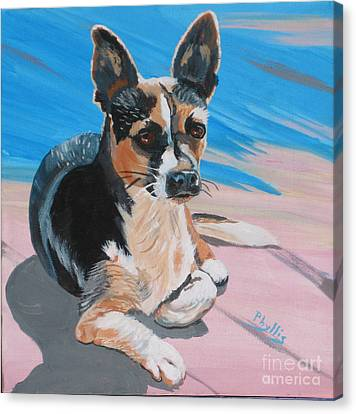 Ancho A Portrait Of A Cute Little Dog Canvas Print by Phyllis Kaltenbach