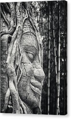 Ancient Buddha Stone Head Canvas Print