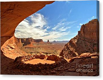 Ancient Life Elevated Canvas Print by Adam Jewell
