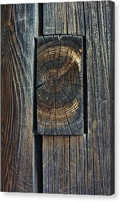 Ancient Mortise And Tenon Joint - Japan Canvas Print by Daniel Hagerman
