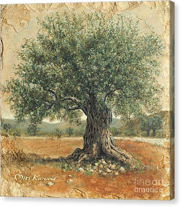 Ancient Olive Tree Canvas Print