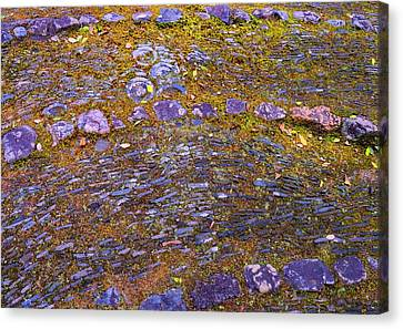 Canvas Print featuring the photograph Ancient Path by Julia Ivanovna Willhite