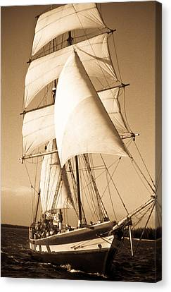 Ancient Pirate Ship In Sepia Canvas Print by Douglas Barnett