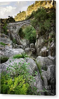 Ancient Romanic Bridge  Canvas Print by Carlos Caetano