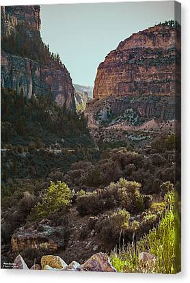 Canvas Print featuring the photograph Ancient Walls In Wyoming by Karen Musick