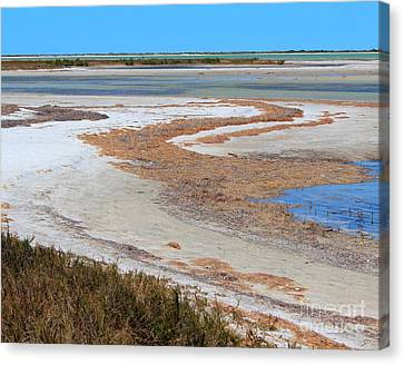 Canvas Print featuring the photograph Anclote Curves by Jeanne Forsythe