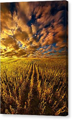 And So We Dream Canvas Print by Phil Koch