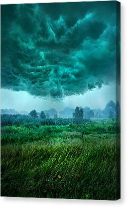 And Then I Ran Canvas Print by Phil Koch