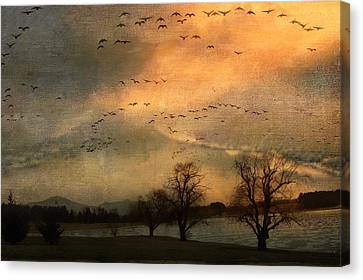 And They Flew Away Canvas Print by Kathy Jennings