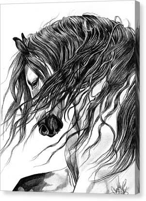 Andalusian Arabian Head Canvas Print by Cheryl Poland