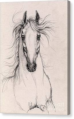 Andalusian Horse Drawing 4 Canvas Print by Angel  Tarantella