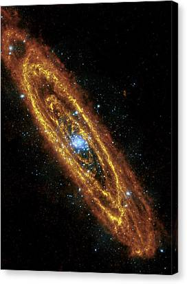 Andromeda Galaxy Canvas Print by Adam Romanowicz
