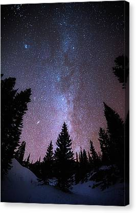 Andromeda Our Neighbor Canvas Print by Darren  White