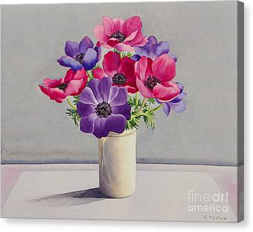 Horticultural Canvas Print - Anemones by Christopher Ryland