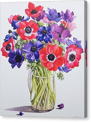 Anemones In A Glass Jug Canvas Print by Christopher Ryland