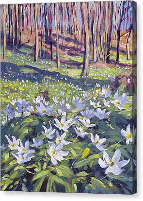 Anemones In The Meadow Canvas Print by David Lloyd Glover