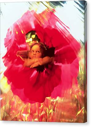 Angel And Poppy Canvas Print by Katherine Fawssett