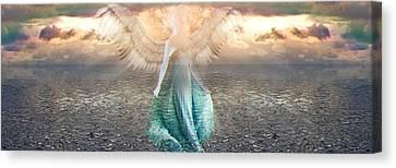 Angel Dream Canvas Print by Li   van Saathoff
