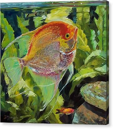 Angel Fish Canvas Print by Donna Munsch