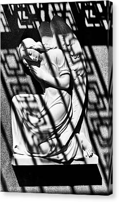 Angel In The Shadows 1 Canvas Print