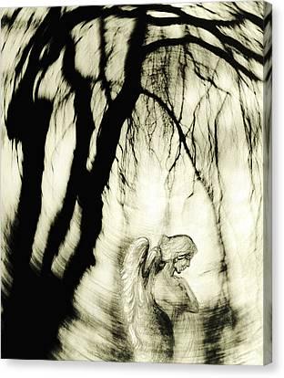 Angel Canvas Print by Michaela Stejskalova