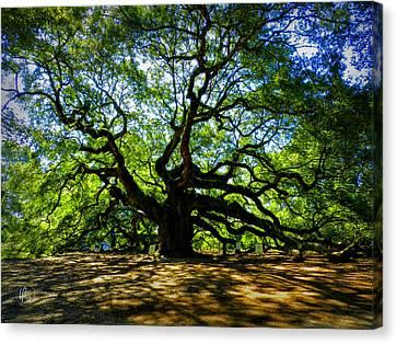 Angel Oak Canvas Print - Angel Oak 003 by Lance Vaughn