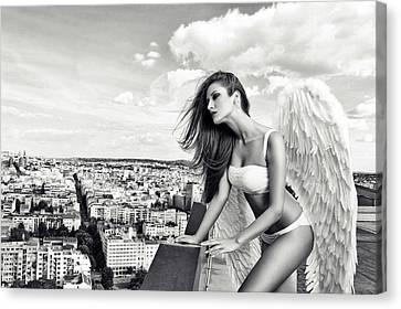 Angel Canvas Print by Stefan Amer
