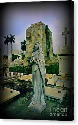Angel With Rose Canvas Print by John Malone