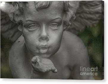Angels Breath Canvas Print by Four Hands Art