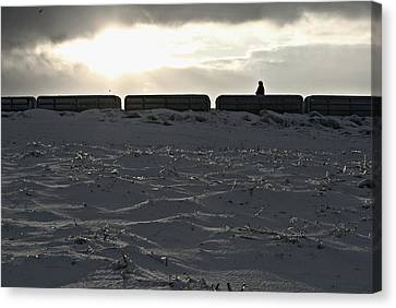 Icy Canvas Print - Angels Everywhere by Dawdy Imagery