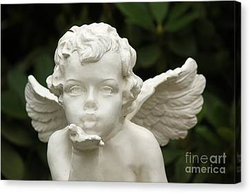 Angels Kiss Canvas Print by Four Hands Art