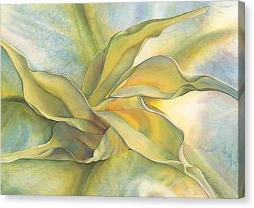 Angel's Pirouette Canvas Print by Sandy  Haight
