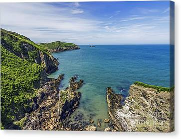 Anglesey Coast Canvas Print by Ian Mitchell