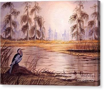 Anhinga At Wakulla Reserve Canvas Print