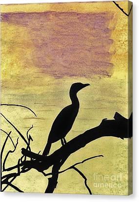 Anhinga - Sunset Canvas Print by D Hackett