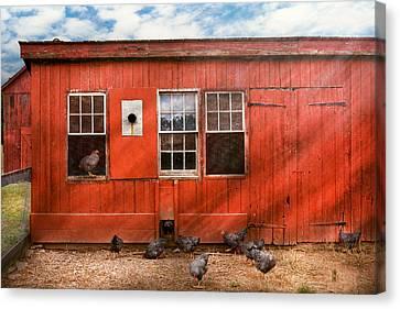 Animal - Bird - Bird Watching Canvas Print by Mike Savad