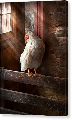 Animal - Chicken - Lost In Thought Canvas Print by Mike Savad