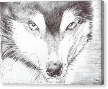 Animal Kingdom Series - Wild Friend Canvas Print by Bobbie S Richardson