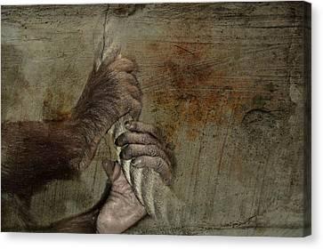 Animal Welfare Canvas Print by Heike Hultsch