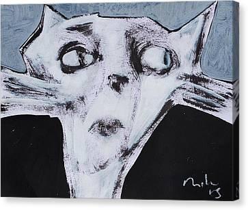 Animalia Feles No. 9  Canvas Print by Mark M  Mellon
