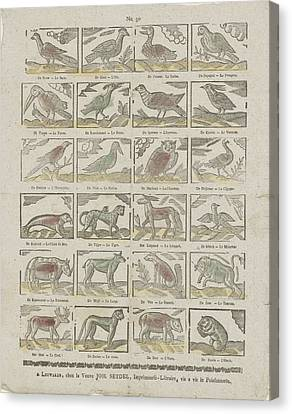 Animals, Johannes Seydel, Anonymous Canvas Print