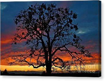 Canvas Print featuring the photograph Ankeny Hill Sunset by Nick  Boren