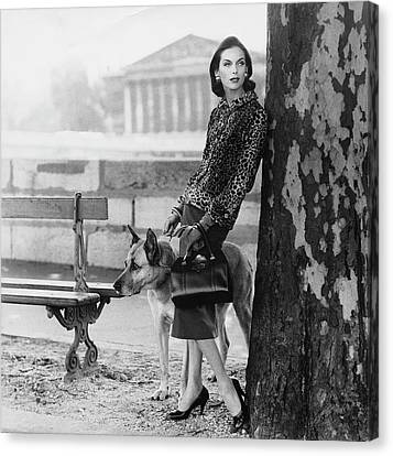 Park Benches Canvas Print - Anne St. Marie Wearing  A Chanel Jacket by Henry Clarke