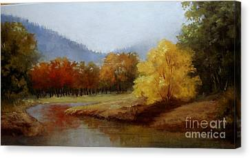 Anns Creek Bed Canvas Print