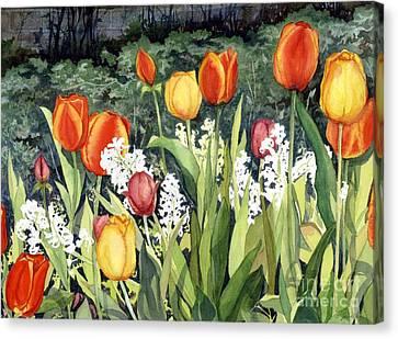 Ann's Tulips Canvas Print