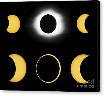 Annular And Total Solar Eclipses Canvas Print by John Chumack