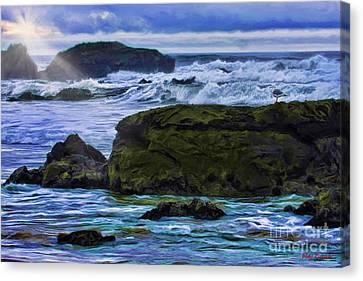 Ano Nuevo Seagull Canvas Print by Blake Richards