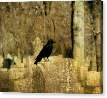 Another Day For Crow In The Graveyard Canvas Print by Gothicrow Images